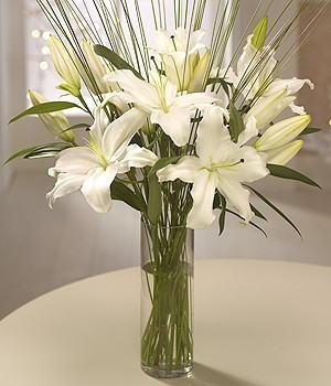 Lilies of Christmas
